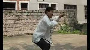 Risultati immagini per Lianchengquan