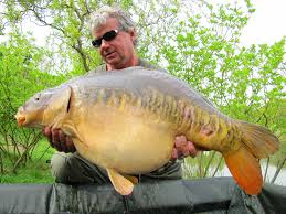 Výsledek obrázku pro Kevin Nash ryby