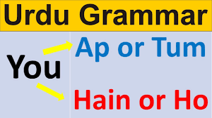 use of aap and tum in urdu learn urdu grammar in english aap in urdu grammar
