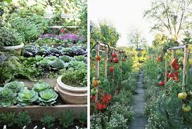 Small Picture Veggie Garden Ideas Garden Ideas And Garden Design Small