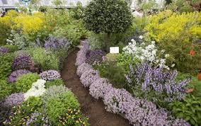 Small Picture Herb Garden Design Plan Herb Garden Design