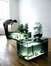 office aquarium. Office Fish Tank. Related Post Tank 3 Aquarium L