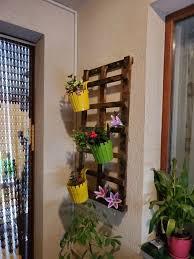 Градина » цветя, растения, саксии. Iztekli Obyavi Cvetarnik Gr Sofiya Reduta Olx Bg