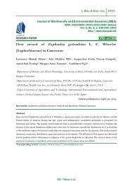 essay writing analysis business planning