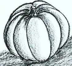 pumpkin drawing with shading. pumpkin drawing with shading i