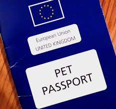 taking your dog to france pre brexit