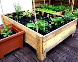 garden box ideas photo 1 of 6 trending vegetable planter boxes on raised plans v