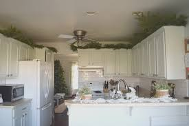 greenery above kitchen cabinets white tile ceramic backsplash kitchen stainless steel modern exhaust fan black marble counter top isl wall filler pull out
