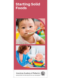 baby pamphlets starting solid foods brochure 50 pk brochure aap