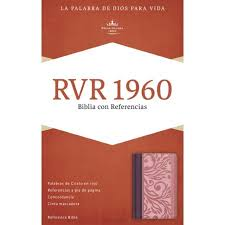 Bible Rvr 1960 Reference Blushwine Leathertouch