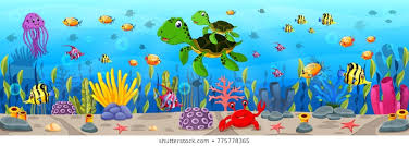 Aquatic Animal Images Stock Photos Vectors Shutterstock