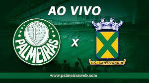 Palmeiras Vs Santo André H2h