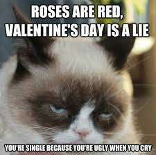 17 Most Funny Grumpy Cat Memes of All Time - Page 5 of 6 - Tons Of ... via Relatably.com