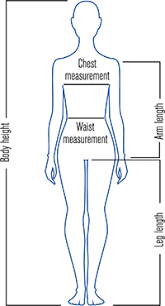 Full Body Measurement Chart Body Measurement Table