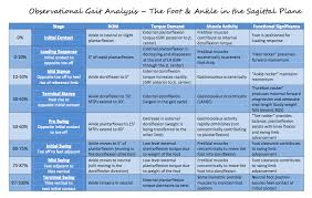 Review Of The Stages Of Gait At The Hip Knee And Ankle