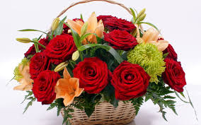 Image result for flower bunch images