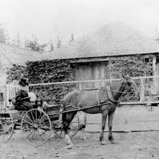 Letha Jane Shelton at Lyonsville — Calisphere
