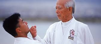 Taekwondo Player Diet Chart The Karate Diet