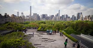 review pierre huyghe mixes stones and water for roof garden at the metreview pierre huyghe mixes stones and water for roof garden at the met