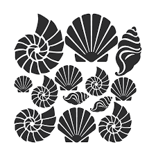 Seashell Design Seashell Wall Art Decals Trendy Wall Designs
