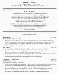 Examples Of Good Resumes Lovely Resume Format Examples Best Of