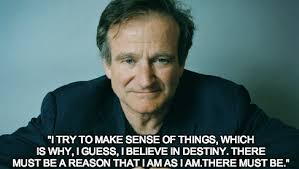 Robin Williams Quotes About Life Impressive Robin Williams Quotes