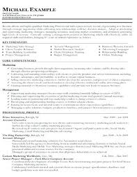 Functional Resume Templates Mesmerizing Functional Resume Resume Ideas Pro