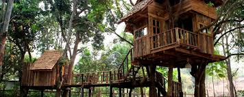 Keemala Luxury Hotel In Phuket Thailand  SLHTreehouse In Thailand