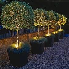 james todman outdoor lighting ideas