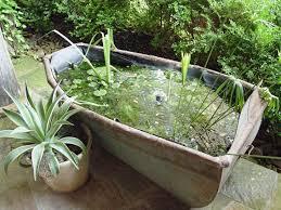 container water garden. Plain Garden Rosemary To Container Water Garden B
