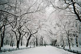 Image result for nyc in snow