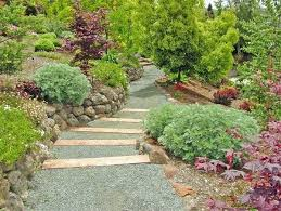 Small Picture Gravel Garden Planting Ideas Decorative Gravel Landscaping Ideas