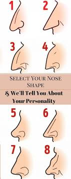 Heres What The Shape Of The Nose Says About Your Character