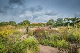 last oudolf garden visit 2018 photo by guy henderieckx