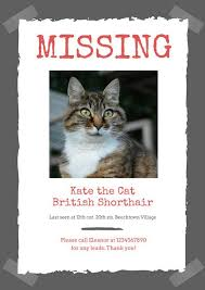Missing Cat Poster Template Lost Cat Flyer Template Red Photo Pet Missing Poster Templates Canva