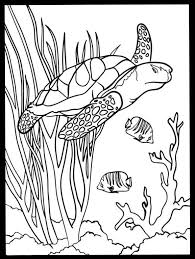 Cute Fish Coloring Pages Best Of Image Under The Sea Creatures