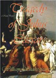 the tragedy of julius caesar essay the tragedy of julius caesar essays manyessays com