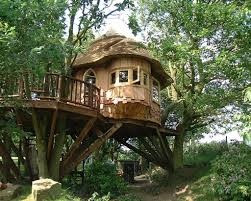 Treehouse Pictures Lake District Tree House Blue Forest