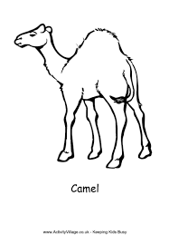 Small Picture Camel Colouring Page