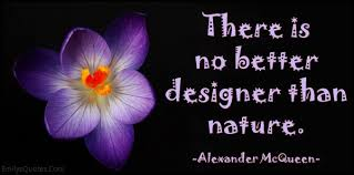 Quotes About The Beauty Of Nature Inspirational Best of Famous Quotes About Beauty Of Nature