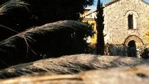 hotel le mas de la chapelle 4 star hotel in arles provence alpes cte dazur boutique hotel arles mas de la