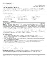 Project Manager Resume Sample Threeroses Us