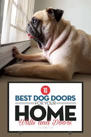 Top 10 Best Dog Doors of 2018 (for walls, screens and doors)