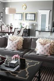 Living Room Color Schemes Grey Couch What Color To Paint Living Room With Grey Sofa Living Room