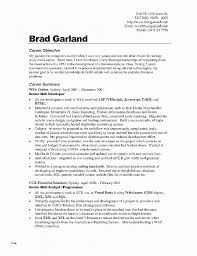 Resume Elegant Resume Template For Word 2010 Resume Template For