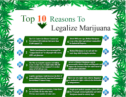 of marijuana essay legalization of marijuana essay