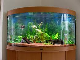 office desk aquarium. Beautiful Aquariums For Home Aquarium Recipeapart And Remarkable Trends Office Desk I