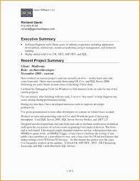 Sample Resume Summary Statements Luxury Sample Resume Summary