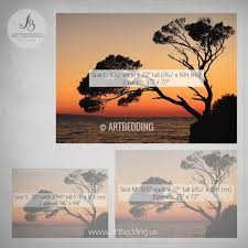 sunset tree silhouettes wall mural self adhesive peel stick photo mural nature photo  on 72 wide wall art with sunset tree silhouettes self adhesive photo mural artbedding
