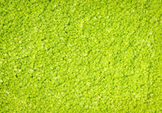green carpet texture. Green Carpet Texture. Background As Texture Royalty Free Stock Photos